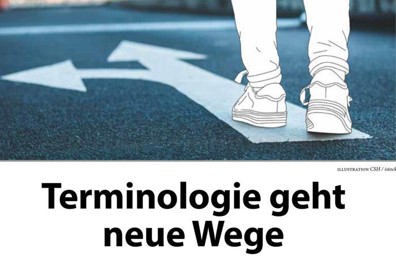 Agiles Terminologiemanagement: Neuer Artikel in der tk